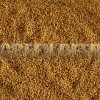 Горчица сарептская, сизая (Brassica juncea L.) - Семена