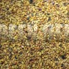Люцерна посевная, синяя (Medicago sativa) - Семена