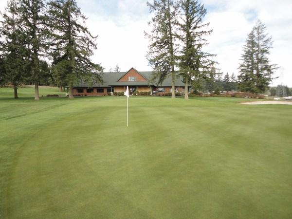 Профессиональные семена для гольфа США, Канада